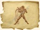 Знак Зодиака Водолей 21.01-18.02
